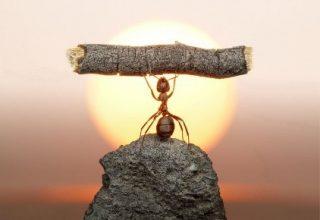 Achtsamkeit & Resilienz
